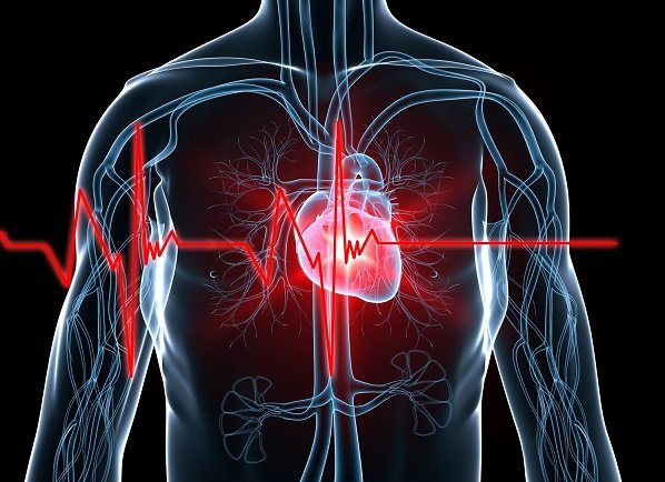 You have a unique heartbeat and that could be very useful to secure technology